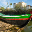 Boat in Albufera, Valencia, Spain — Stock Photo #29945233