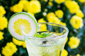 Yellow cocktail with a slice of lime — 图库照片