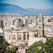 Malaga cathedral — Stock Photo #37319307