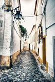 ポルトガル、エヴォラ — ストック写真