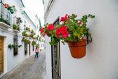 Priego de Cordoba, Spain — Stock Photo