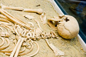 Archeology, human bones — Stock Photo