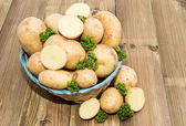 Fresh Potatoes and Parsley in a basket — Stok fotoğraf