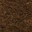 Dark Dirt Texture - Stock Photo