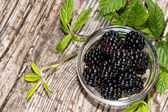 Small bowl with Blackberries — Stock Photo