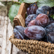 Basket filled with fresh Plums — Stock Photo #12613987