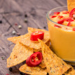 Fresh Cheese Sauce with Nachos — Stock Photo