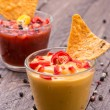 Salsa- and Cheese Sauce — Stock Photo #12786605