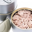 Some Cans with Tuna fish — Stock Photo