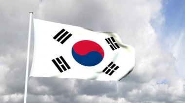 Flag of South Korea — Stock Video