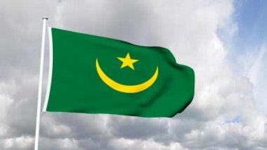 Flagga mauretanien — Stockvideo