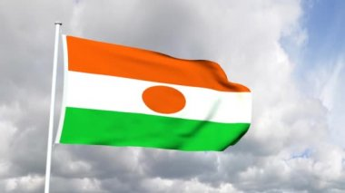 Flag of Niger — Stock Video