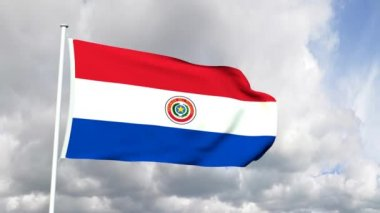 Flag of Paraguay — Stock Video