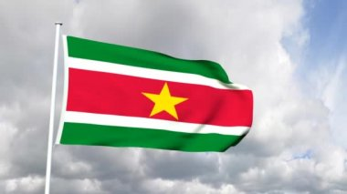Flag of Suriname — Stock Video