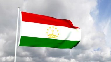 Flag of Tajikistan — Stock Video