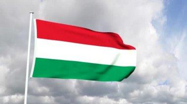 Vlajka maďarska — Stock video