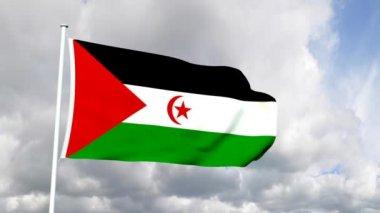 西撒哈拉的旗子 — 图库视频影像