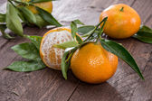 Fresh Tangerine with leaves — Stock Photo