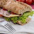 Fresh Sandwich with Ham and Cheese — Stock Photo