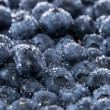 Wet Blueberries Background — Stock Photo