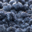 Stock Photo: Wet Blueberries Background