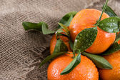 Fresh Tangerines with leaves — Stock Photo