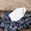 Blueberries with empty tag — Stock Photo