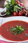 Plate with Tomato Soup — Foto Stock