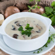 Portion of Mushroom Soup — Stok fotoğraf