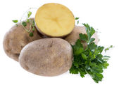 Potatoes isolated on white — Stock Photo