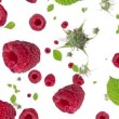Falling Raspberries as background video — Stock Video