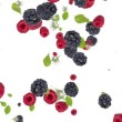 Falling Mixed Berries on white background . Sign heart — Stock Video