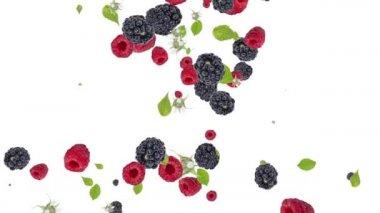 падение смешанных ягод на белом фоне. знак сердце — Стоковое видео