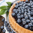 Stock Photo: Blueberry Tart