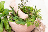 Fresh herbs in a small wooden bowl — Stock Photo