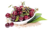 Isolated Cherries — Stock Photo
