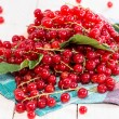 Stock Photo: Red Currants (macro shot)