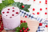 Red Currant Smoothie — Stock Photo