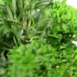 Fresh Herbs rotating — Stock Video #32074829
