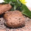 Sunflower Seed Buns (loopable) — Stock Video #32791145