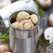 Portion of canned Mushrooms — Stock Photo