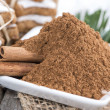 Portion of Cinnamon — Stock Photo #35180757