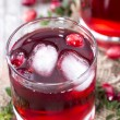 Chilled Cranberry Juice — Stock Photo #35181859