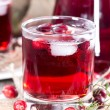 Chilled Cranberry Juice — Stock Photo #35181871