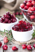 Fresh made Cranberry Jam — Stockfoto