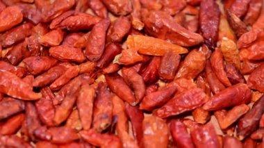 Fresh Chilli Spice — Stock Video