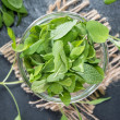 Fresh Sage in a bowl — Stock Photo #41476719