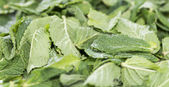 Mint Leaves background — Stock Photo