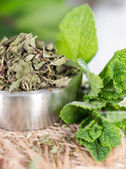 Bowl with dried Mint — Stock Photo