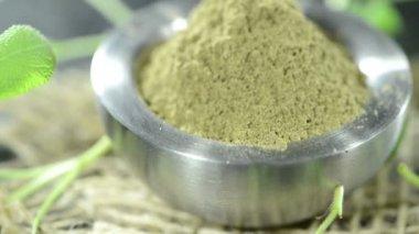 Sage Powder Portion — Stockvideo